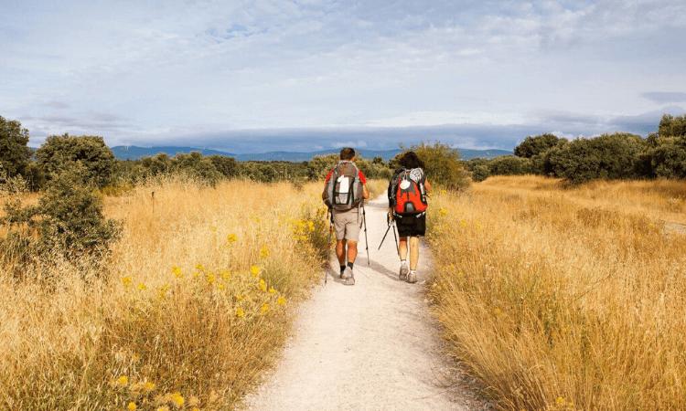 camino-frances-distance el-camino-real-espagne